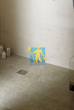 limestone tiles shower moleanos blue Woodville South cleaning